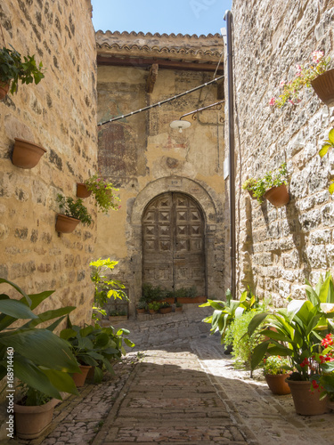 Fototapety, obrazy: Plants and flowers in pots on narrow streets of the ancient village of Spello, Umbria, Italy