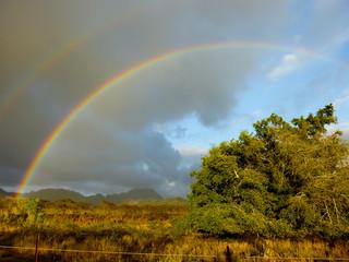A rainbow appears after rainfall on the Hawaiian island of Kauai