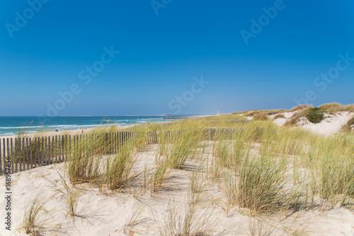 Fotografie, Obraz  Praia da Barra, beach near Aveiro in Portugal, sand dunes