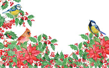Christmas Background With Mistletoe ,poinsettias ,birds, Red Cardinal,titmouse Watercolor
