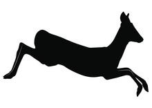 Vector Silhouette Of Roe Deer ...