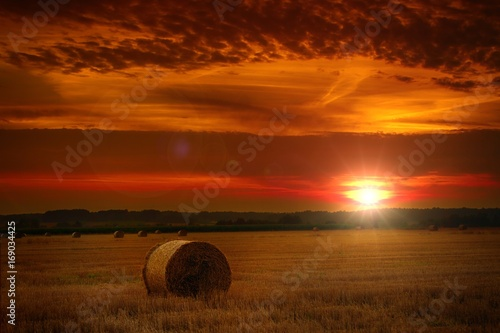 Garden Poster Brown The sun over the straw bales