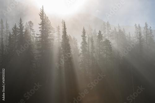 Foto op Canvas Grijs Banff Landscape
