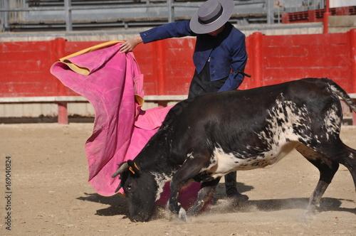 Keuken foto achterwand Stierenvechten Torero dans l'arène 2