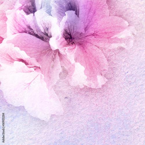 akwarela i kwiaty streszczenie tło