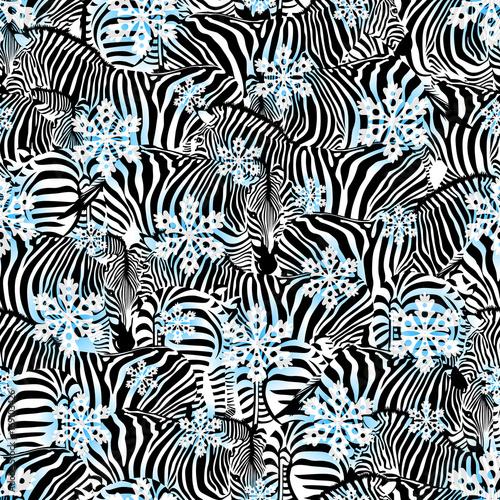 zebra-z-platkami-sniegu