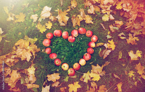 Foto op Canvas Herfst apples in heart shape and autumn leaves on grass