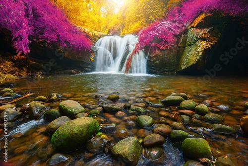 wodospad-phu-soi-dao-w-tajlandii-niesamowite-purpurowe-i-zlote-liscie-w-blasku-slonca