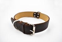 Dog Collar Stock Images. Brown...