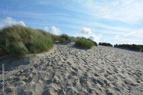 Spoed Foto op Canvas Noordzee Sand Dünen mit Strandhafer an der Nordsee