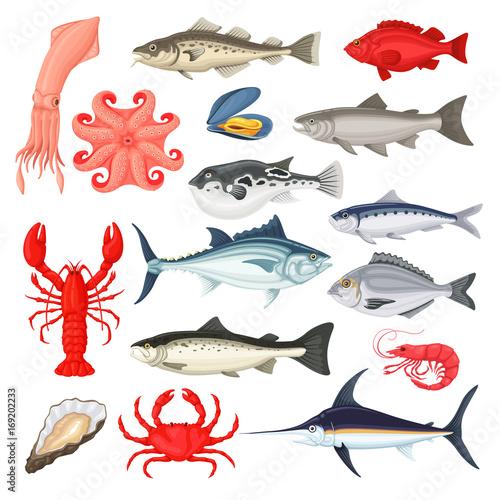 Valokuva  Seafood luxury collection