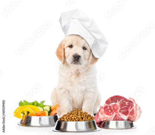 Funny golden retriever puppy in chef's hat with food for pets. isolated on white background Wall mural