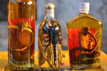 Laos Luang Snakes Scorpion Drink