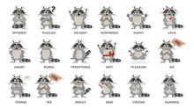 Raccoon Emotions Set.