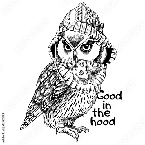 Owl in a hood. Vector black and white illustration.