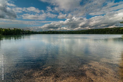 Foto op Canvas Grijs Very beautiful summer water landscape. View from the coast to a picturesque forest lake under a blue cloudy sky