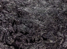 Texture Of Dried Seaweed Backg...