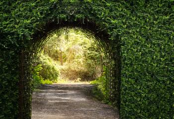 Fototapeta Ogrody Tree arch door entrance