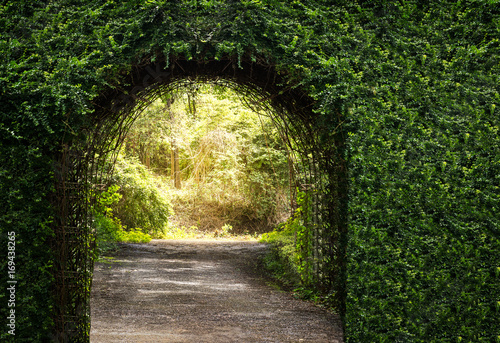 Photo  Tree arch door entrance