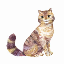 Watercolor Cute Cat, Vector Il...