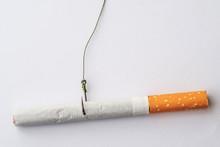 Cigarette Caught On A Fishing ...