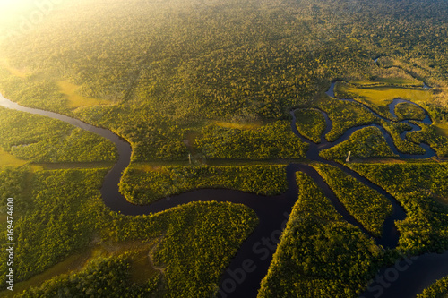 Wall Murals Central America Country Amazon Rainforest in Brazil