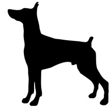 Silhouette Of A Dog.Vector Ill...