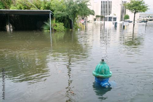 Zdjęcie XXL Napompowane ulice Houston. Hydrant pod wodą. Huragan Harvey
