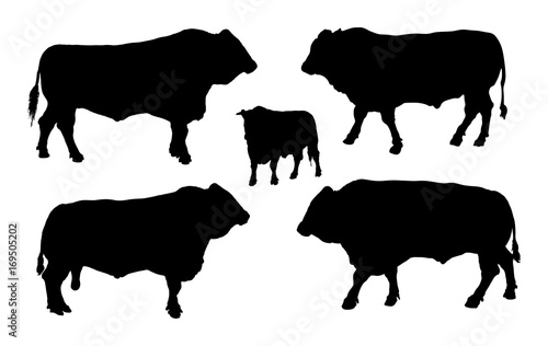 Standing adult bull vector silhouette illustration isolated on white background Wallpaper Mural