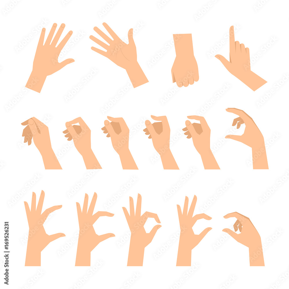 Fototapeta Various gestures of human hands isolated  on a white background. Vector flat illustration of female hands in different situations. Vector design elements for infographic, web, internet, presentation.