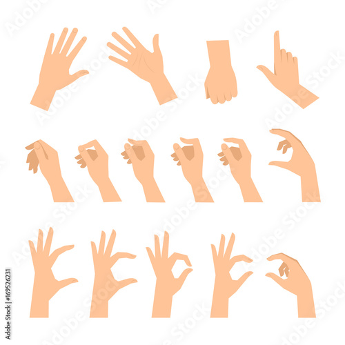 Valokuva  Various gestures of human hands isolated  on a white background