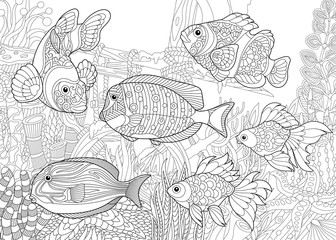 Coloring page of underwater world. Different fish species on the background of a sunken ship. Freehand sketch drawing for adult antistress coloring book in zentangle style.