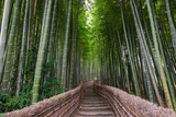 Fototapeta Las - Path Through A Bamboo Grove