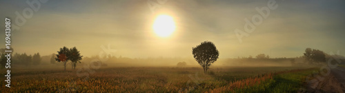 Large-format panorama of summer dawn
