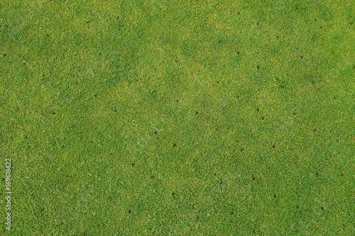 Fényképezés  Aerated putting green on golf course - maintenance background