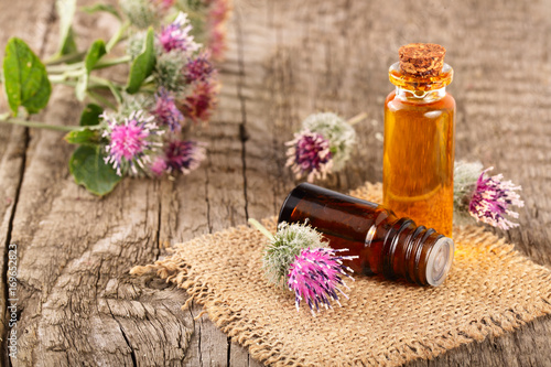 burdock oil in glass bottle and burdock flowers isolated on white background Wallpaper Mural