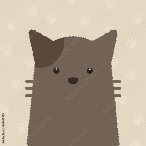 Fotografie, Obraz  cute flat brown cat portrait with cat's paws pattern on brown background