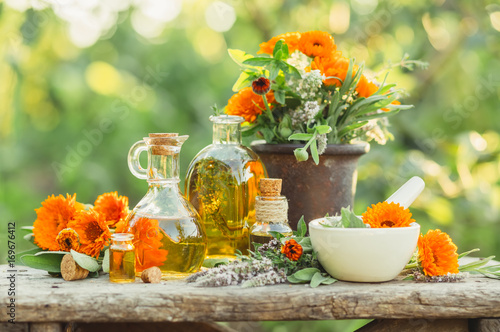 Spa composition with Fresh herbs, calendula and different types of oils Canvas Print
