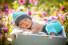 Cute Newborn Baby Boy, Sleepin...
