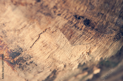 Foto op Canvas Brandhout textuur Close shot of a piece of firewood showing texture and grain. Shallow depth of field.