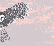 Flying Owl. Hand Drawn Vector ...