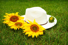 Straw Hat And Bud Flower Of A Sunflower On A Background Of Green Grass