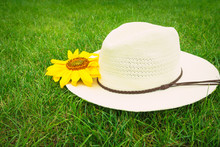 Straw Hat And Bud Flower Of A ...