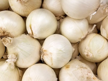 Raw White Onions At The Market