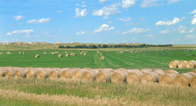 Hay Bales And Prairie In Southern South Dakota With Ideal Blue Sky And White Puffy Clouds