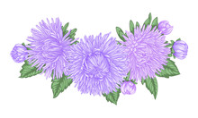 Beautiful Bouquet With Purple Asters And Leaves. Floral Arrangement. Design Greeting Card And Invitation Of The Wedding, Birthday, Valentine's Day, Mother's Day And Other Holiday