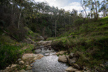 Creek With Flowing Water At Morialta Conservation Park