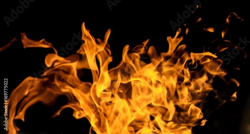 Fototapety, obrazy: Fire flames on a black background