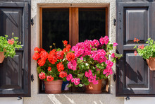 Flowers And Flowering Balconies In The Mountains. Sauris.