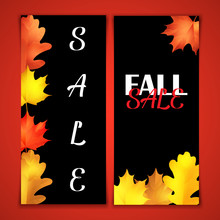 Autumn Sale Brochure. Black Board With Chalk Lettering. Realistic Leaves Of Oak And Marple